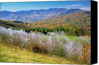 Mountain View Canvas Prints - Frosty Morn from Max Patch Canvas Print by Alan Lenk