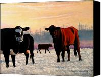Cow Canvas Prints - Frosty Reception Canvas Print by Doug Strickland