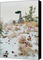Storm Sculpture Canvas Prints - Frozen Viewpoint Canvas Print by Timothy Hedges