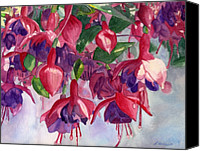 Fuchsia Canvas Prints - Fuchsia Frenzy Canvas Print by Lynne Reichhart