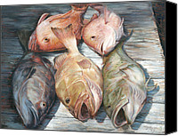 Grouper  Canvas Prints - Full House Canvas Print by Pam Talley