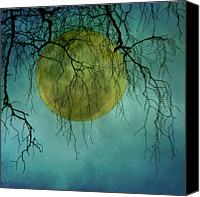 Bare Tree Canvas Prints - Full Moon Canvas Print by Jill Ferry