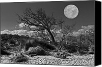 Setting Canvas Prints - Full Moon over Jekyll Canvas Print by Debra and Dave Vanderlaan