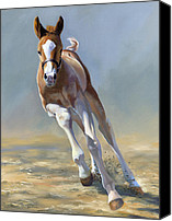 Foal Painting Canvas Prints - Full of Potential Canvas Print by Alecia Underhill