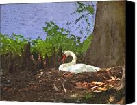 Lake Canvas Prints - Furman University Swan Canvas Print by Gary Adkins