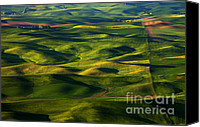 Rolling Hills Canvas Prints - Furrows and Folds Canvas Print by Mike  Dawson