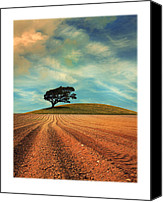 Ploughed Canvas Prints - Furrows Canvas Print by Mal Bray