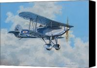 Raf Canvas Prints - Fury II RAF Canvas Print by Murray McLeod