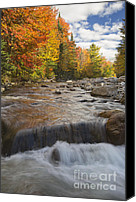 White River Scene Canvas Prints - Gale River - White Mountains New Hampshire Canvas Print by Erin Paul Donovan