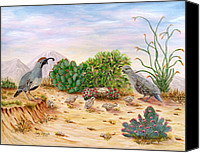 Quail Canvas Prints - Gambel Quails Day in the Life Canvas Print by Judy Filarecki