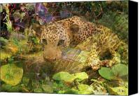 Leopard Mixed Media Canvas Prints - Game Spotting Canvas Print by John Robert Beck