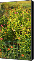 Thelma Harcum Canvas Prints - Garden Flowers Mixed Colors Canvas Print by Thelma Harcum