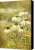 Photomanipulation Canvas Prints - Garden Party Canvas Print by Reflective Moments  Photography and Digital Art Images