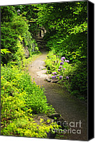 Walkway Canvas Prints - Garden path Canvas Print by Elena Elisseeva