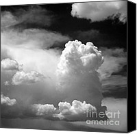 Black And White Cats Canvas Prints - Garfield in the skies Canvas Print by Christine Till