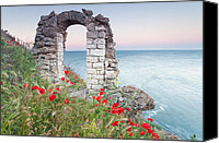 Bulgaria Canvas Prints - Gate in the Poppies Canvas Print by Evgeni Dinev