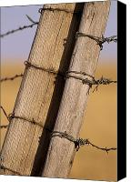 Barbed Wire Fences Photo Canvas Prints - Gate Posts Join A Barbed Wire Fence Canvas Print by Gordon Wiltsie