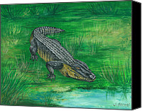 John Brown Canvas Prints - Gator Canvas Print by John Brown