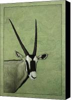 Animal Drawings Canvas Prints - Gemsbok Canvas Print by James W Johnson