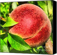 Rural Scenes Mixed Media Canvas Prints - Georgia Peach Canvas Print by Elizabeth Coats