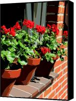 Terra Cotta Digital Art Canvas Prints - Geraniums in Germany Canvas Print by Carol Groenen