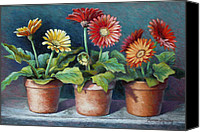 Clay Pastels Canvas Prints - Gerberas Three Canvas Print by Theresa Shelton