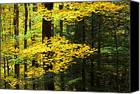 Gatlinburg Canvas Prints - Getting Ready Canvas Print by Rich Franco