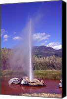 Napa Valley Canvas Prints - Geyser Calistoga Canvas Print by Garry Gay