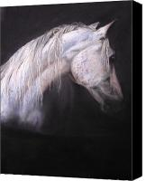 Horses Pastels Canvas Prints - Ghost Canvas Print by Jan Fontecchio Perley
