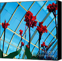 Canna Canvas Prints - Giant Canna Lilly Canvas Print by David Klaboe