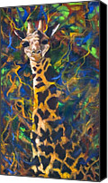 Kd Neeley Canvas Prints - Giraffe Canvas Print by Kd Neeley