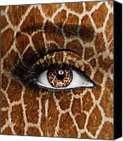 Yosi Cupano Canvas Prints - Giraffe Canvas Print by Yosi Cupano