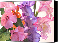Purple Gladiolas Canvas Prints - Gladiola Bouquet Canvas Print by Kathie McCurdy
