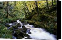 County Donegal Photo Canvas Prints - Glenveagh National Park, County Canvas Print by Gareth McCormack