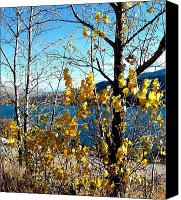 Glimpse Canvas Prints - Glimpse of Kalamalka Lake Canvas Print by Will Borden