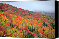 Vermont Autumn Foliage Canvas Prints - Glorious Canvas Print by Betty LaRue