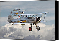 Raf Canvas Prints - Gloster Gladiator Canvas Print by Pat Speirs