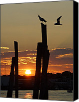 Matthew Green Canvas Prints - Gloucester sunset Canvas Print by Matthew Green