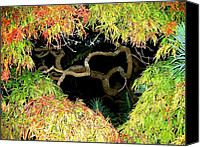 Gnarly Canvas Prints - Gnarly Autumn Beauty Canvas Print by Will Borden
