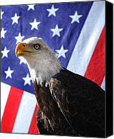 American Eagle Special Promotions - God Bless Our Heros Canvas Print by Adele Moscaritolo