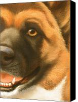 Pet Portrait Pastels Canvas Prints - Goggie Akita Canvas Print by Karen Coombes