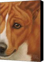 Pet Portrait Pastels Canvas Prints - Goggie Basenji Canvas Print by Karen Coombes