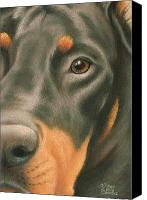 Pet Portrait Pastels Canvas Prints - Goggie Doberman Canvas Print by Karen Coombes