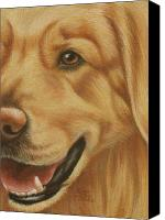 Pet Portrait Pastels Canvas Prints - Goggie Golden Canvas Print by Karen Coombes