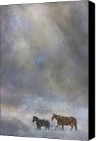 Animals Digital Art Canvas Prints - Going To Barn Canvas Print by Ron Jones