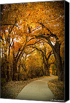 Sandoval Canvas Prints - Golden Canopy Canvas Print by Lena Sandoval-Stockley