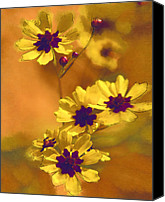 Floral Digital Art Special Promotions - Golden Coreopsis Wildflowers  Canvas Print by Kathy Clark