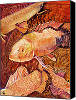 Goldfish Canvas Prints - Golden Koi Canvas Print by Pat Saunders-White            