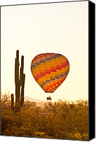 Hot Air Balloons Canvas Prints - Golden Light Hot Air Balloon And Saguaro Cactus Canvas Print by James Bo Insogna