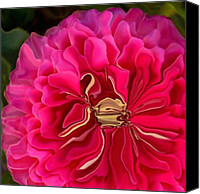 Zinna Canvas Prints - Golden Zinna Pink Canvas Print by Patricia A Williams